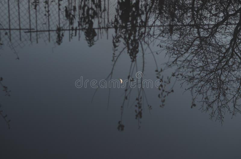 Μήνας στο νερό στοκ εικόνες