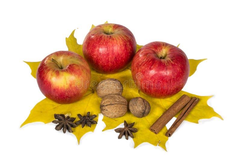 Μήλα, καρύδια και καρυκεύματα στα φύλλα σφενδάμου φθινοπώρου στοκ φωτογραφία με δικαίωμα ελεύθερης χρήσης