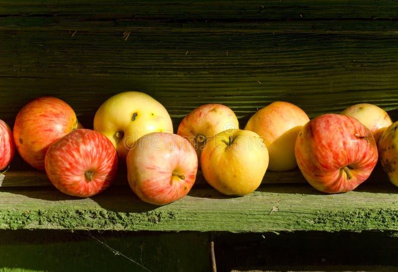 Μήλα, μήλο, φρούτα, κόκκινο, υπόβαθρο, φρέσκο, φθινόπωρο, πτώση στοκ φωτογραφία