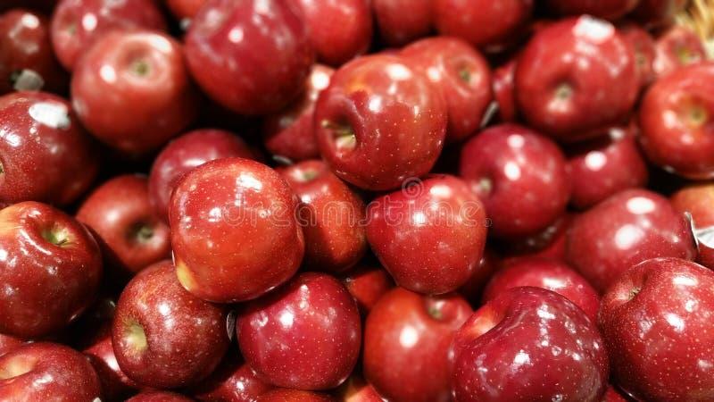 Μήλα ομορφιάς της Ρώμης στοκ εικόνες