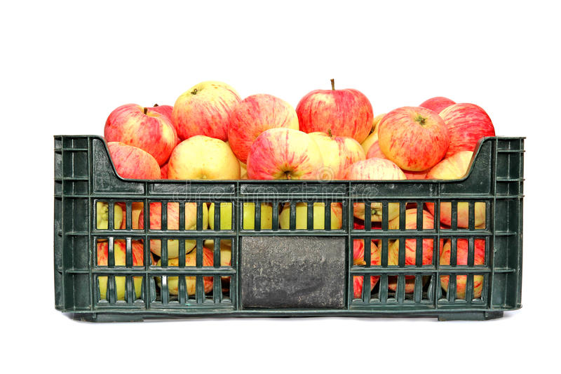 Μήλα σε ένα πλαστικό κιβώτιο που απομονώνεται στοκ φωτογραφίες με δικαίωμα ελεύθερης χρήσης