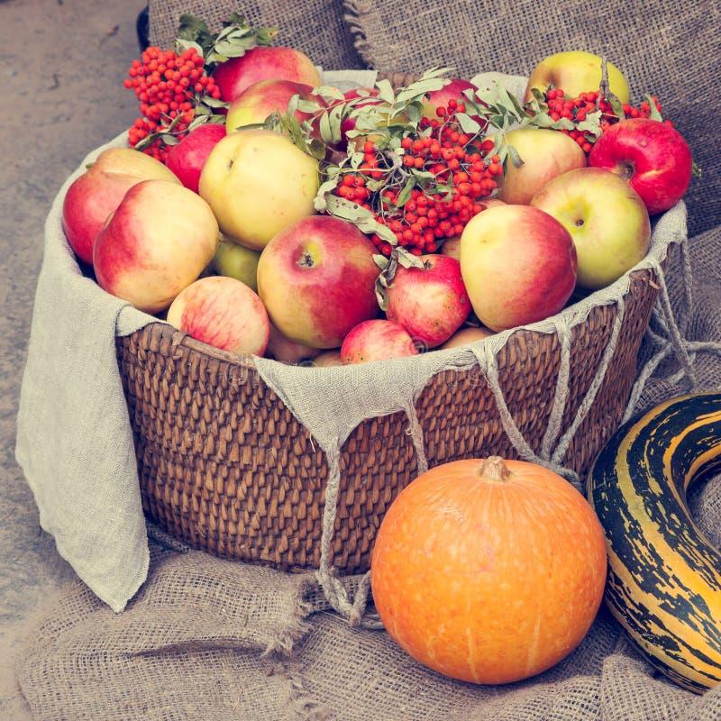 Μήλα στο ψάθινο μούρο καλαθιών, κολοκύθας, κολοκυθιού και σορβιών στοκ φωτογραφίες με δικαίωμα ελεύθερης χρήσης