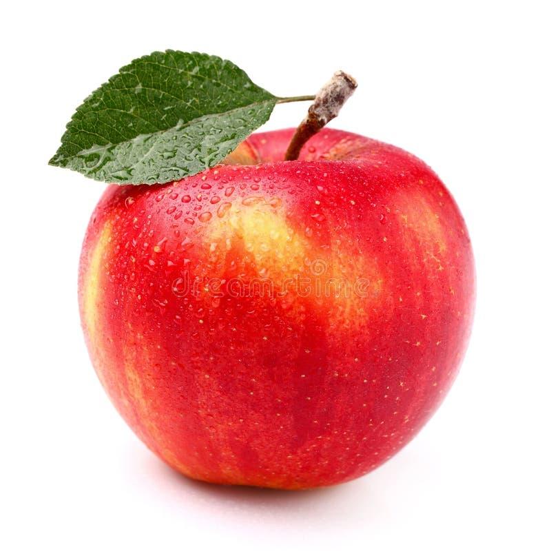 μήλο ένα στοκ φωτογραφία
