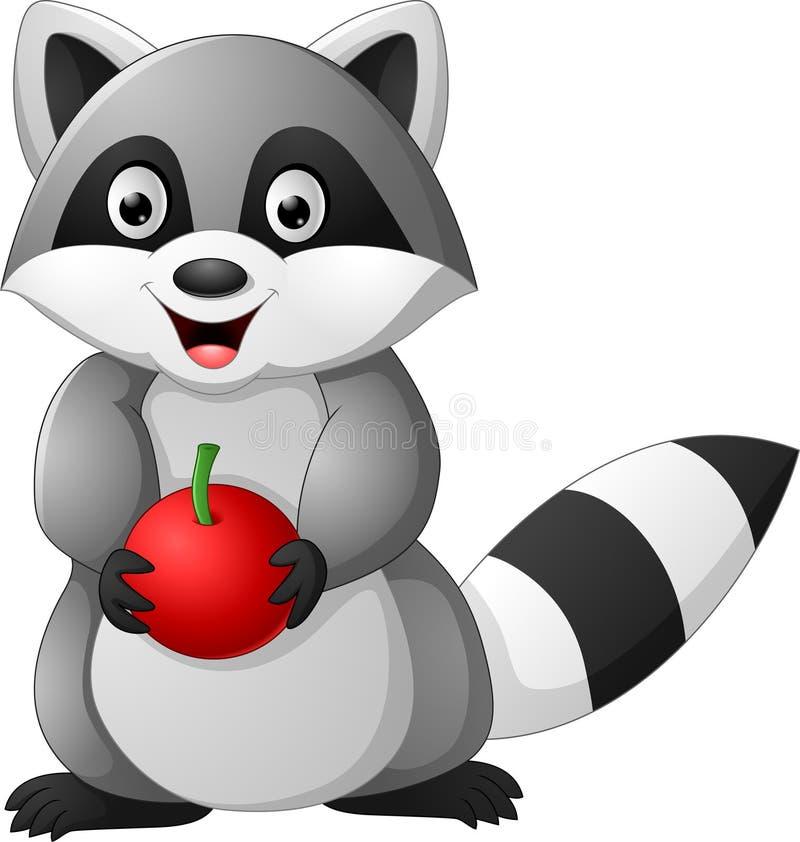 Μήλο εκμετάλλευσης κινούμενων σχεδίων racoon ελεύθερη απεικόνιση δικαιώματος