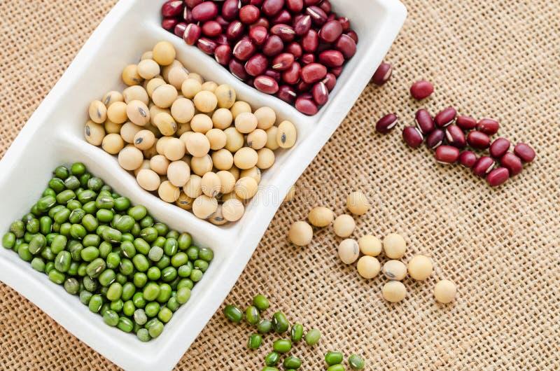 Μίγμα των φασολιών σπόρων, του πράσινου φασολιού, του azuki ή του κόκκινου φασολιού, φασόλι σόγιας στοκ φωτογραφία με δικαίωμα ελεύθερης χρήσης
