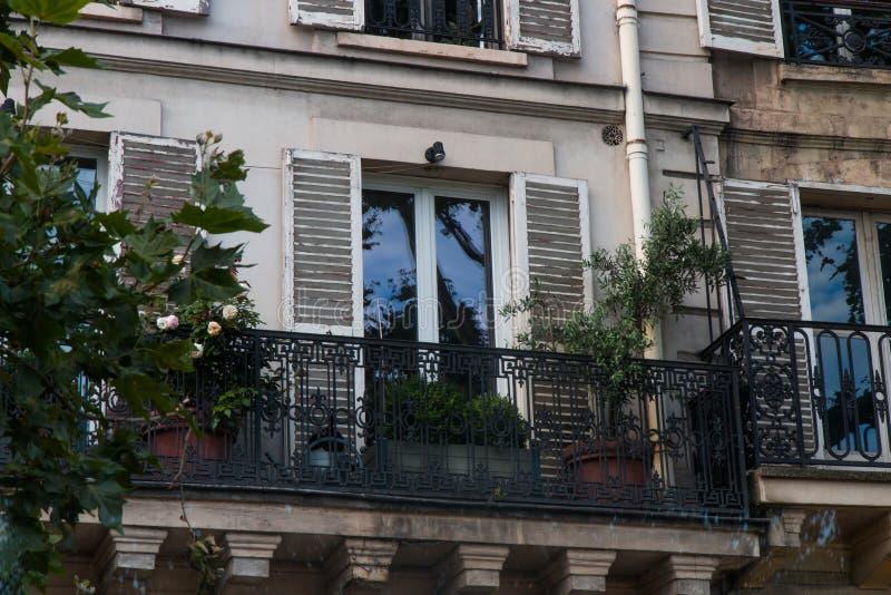 Μίνι κήπος στο γαλλικό μπαλκόνι στοκ φωτογραφία