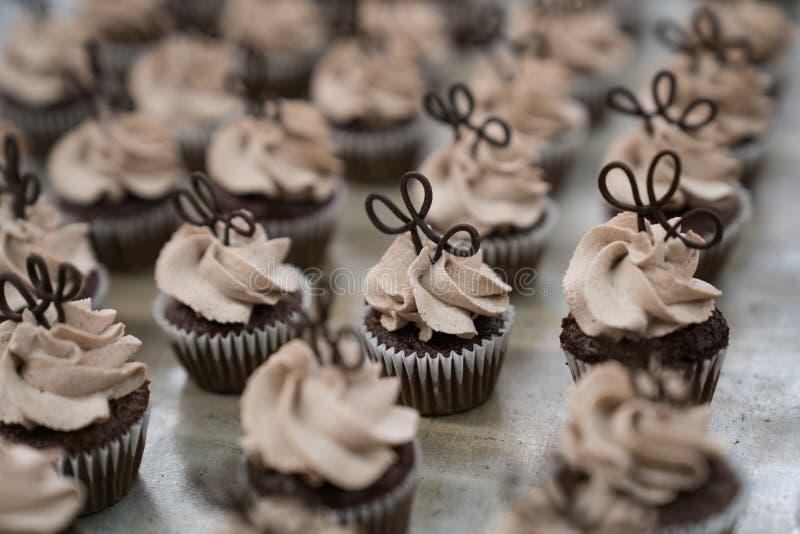 Μίνι σοκολάτα Cupcakes με τους άριστους σοκολάτας στοκ εικόνες