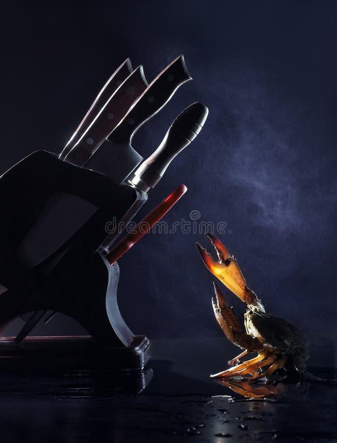 μαγείρεμα στοκ φωτογραφίες με δικαίωμα ελεύθερης χρήσης