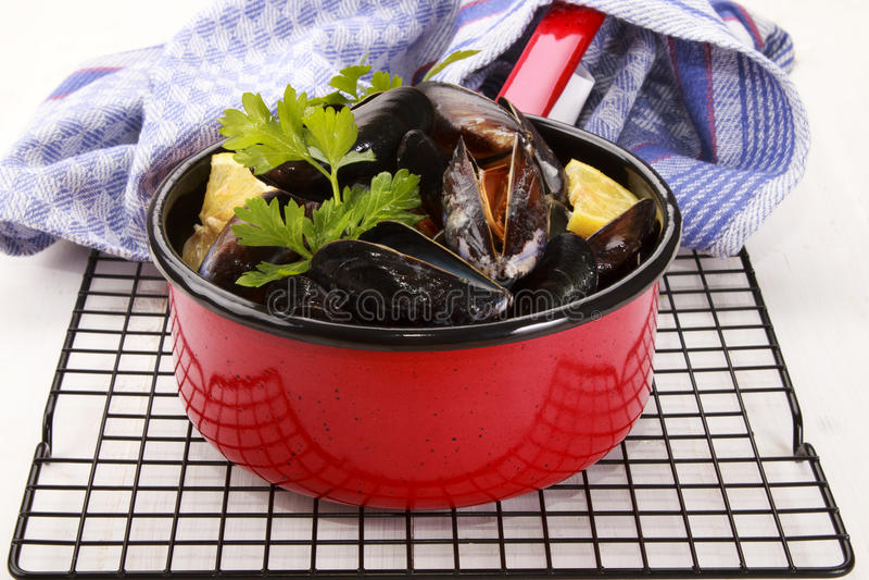 Μαγειρευμένα σκωτσέζικα μύδια με το μαϊντανό και το λεμόνι στοκ φωτογραφία με δικαίωμα ελεύθερης χρήσης