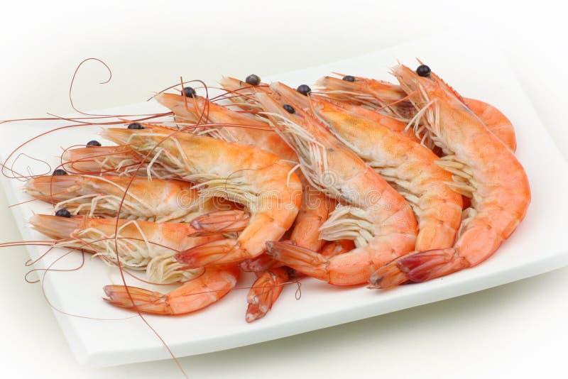 μαγειρευμένες γαρίδες στοκ φωτογραφίες