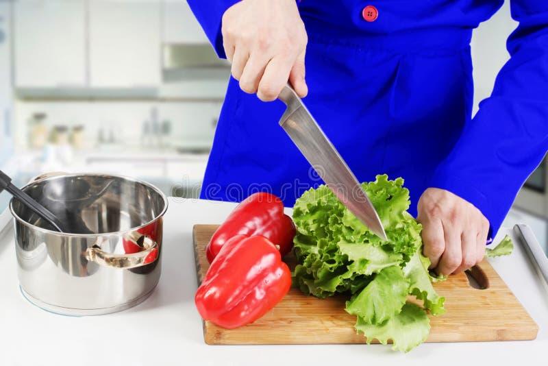 μαγειρεύοντας λαχανικά σαλάτας χεριών ανθρώπινα στοκ φωτογραφία με δικαίωμα ελεύθερης χρήσης