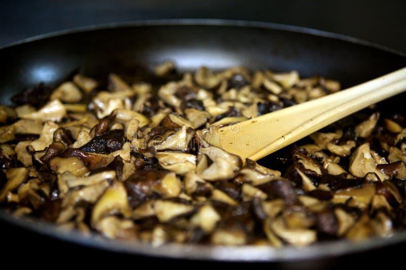μαγειρεύοντας μανιτάρι στοκ φωτογραφία