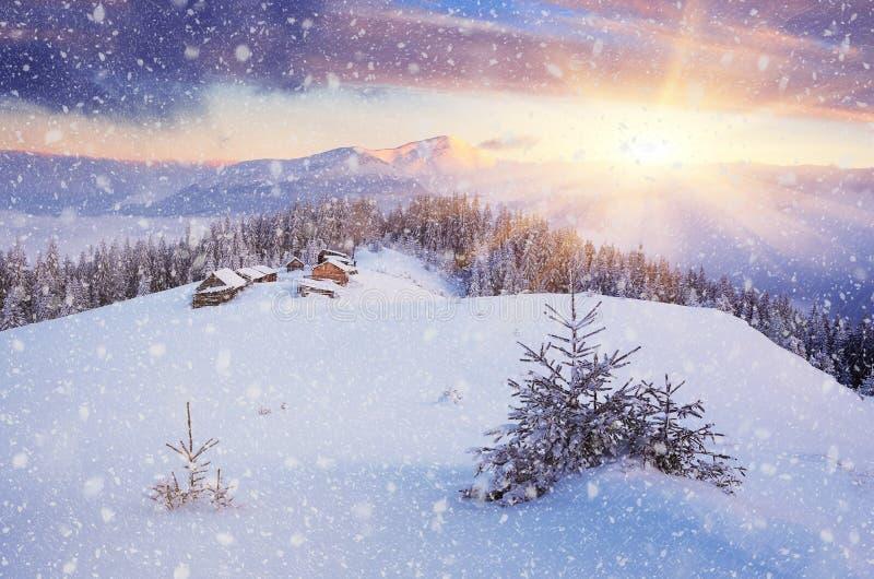 μαγική νύχτα τοπίων Χριστουγέννων στοκ εικόνα