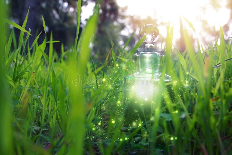 Μαγική φίλτρο σκόνης νεράιδων στο μπουκάλι στο δάσος στοκ φωτογραφίες με δικαίωμα ελεύθερης χρήσης