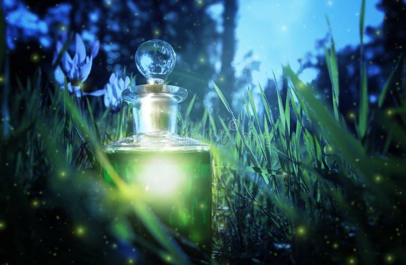 Μαγική φίλτρο σκόνης νεράιδων στο μπουκάλι στο δάσος στοκ εικόνα με δικαίωμα ελεύθερης χρήσης