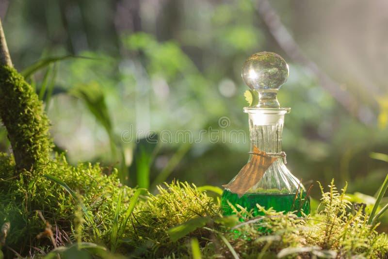 Μαγική φίλτρο στο μπουκάλι στο δάσος στοκ φωτογραφία με δικαίωμα ελεύθερης χρήσης