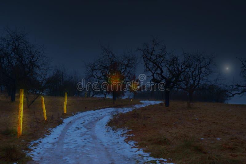 Μαγική χώρα νύχτας στοκ εικόνες