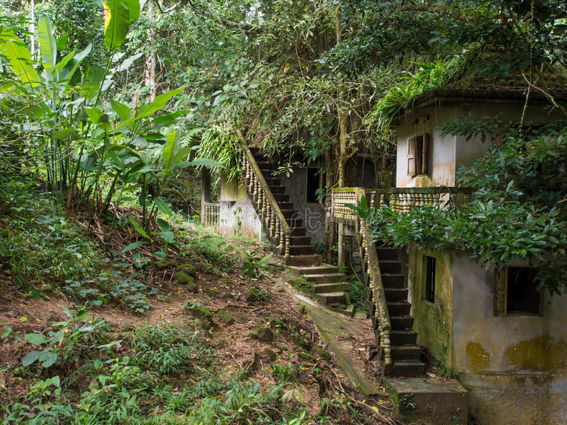 Μαγικός κήπος του Βούδα Tanim, Koh νησί Samui στοκ εικόνα