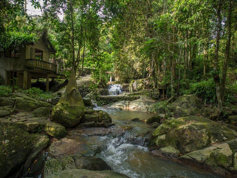 Μαγικός κήπος του Βούδα Tanim, Koh νησί Samui στοκ εικόνα με δικαίωμα ελεύθερης χρήσης