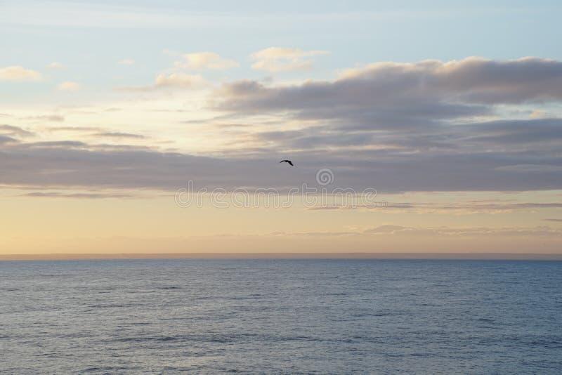 Μαγικός ωκεανός Ατλαντικός πέρα από την ανατ&o Πρωί Κύματα της κυματωγής στοκ εικόνα