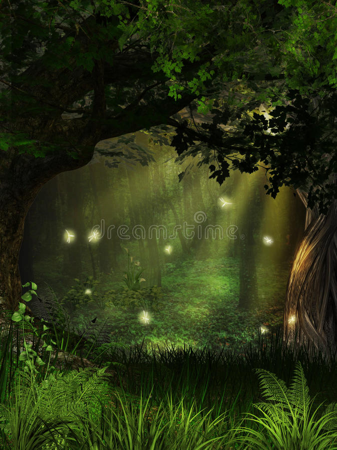Μαγικό δάσος Firefly στοκ εικόνες
