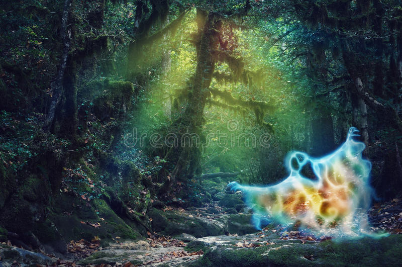 Μαγικό συχνασμένο χρώμα δάσος με ένα τρομακτικό φάντασμα πυρκαγιάς