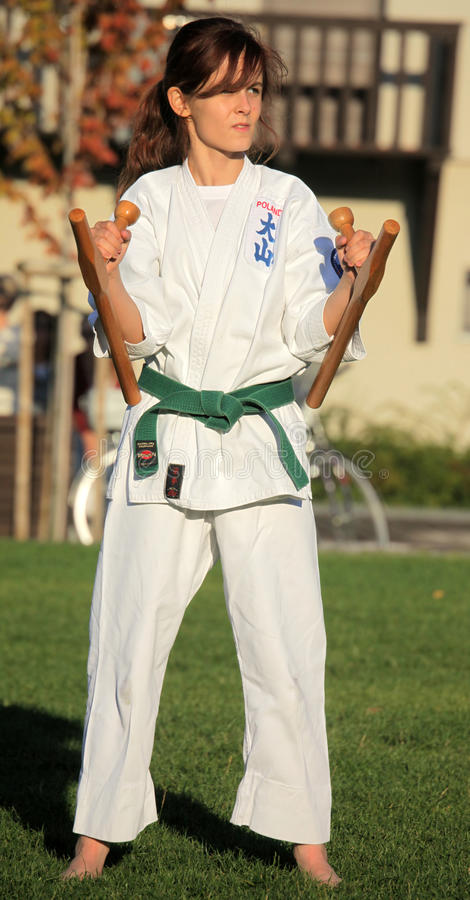 Μαθητευόμενος Taekwondo στοκ εικόνες