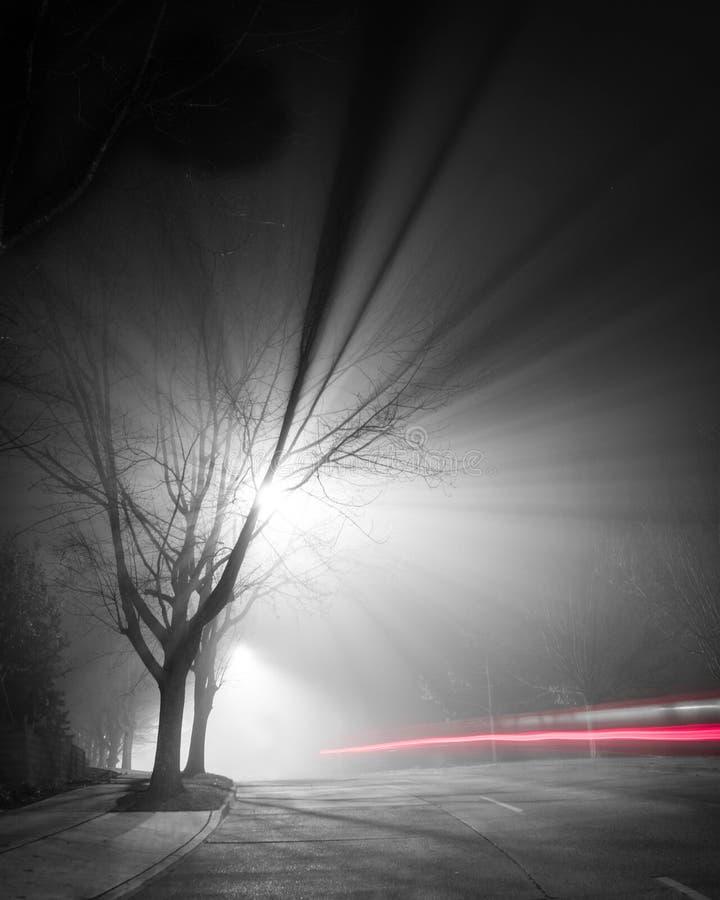 Μακριά ομιχλώδης νύχτα έκθεσης στοκ εικόνες
