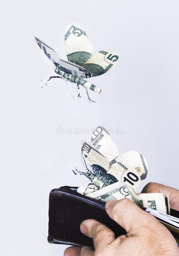 μακριά πετώντας να αναπτύξει φτερά χρημάτων στοκ εικόνες