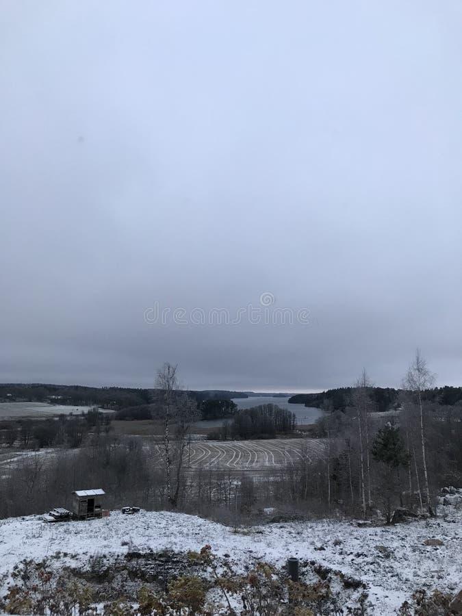Μακρινά treas φύσης ημέρας χιονιού λιμνών στοκ φωτογραφία με δικαίωμα ελεύθερης χρήσης