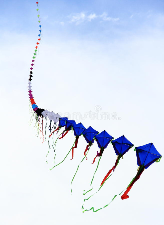 Μακριοί τμηματικοί ικτίνοι που πετούν στον ουρανό στοκ φωτογραφία με δικαίωμα ελεύθερης χρήσης