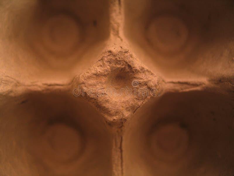 μακροεντολή αυγών χαρτοκιβωτίων στοκ εικόνες