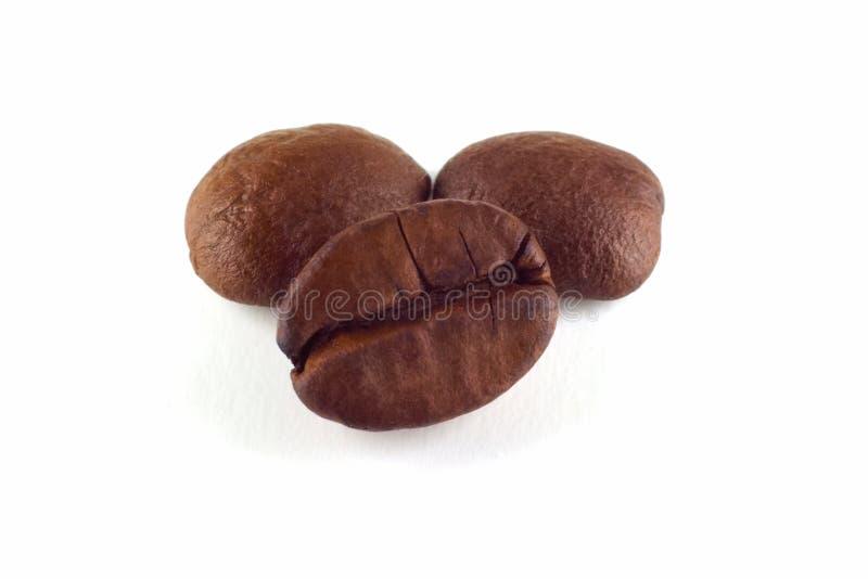 μακροεντολή καφέ φασολ&iot στοκ φωτογραφία με δικαίωμα ελεύθερης χρήσης