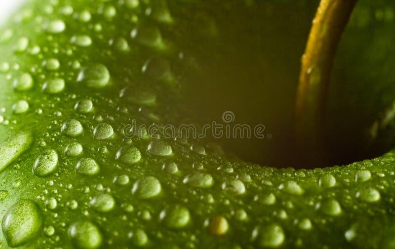 Μακροεντολή μήλων στοκ εικόνες με δικαίωμα ελεύθερης χρήσης
