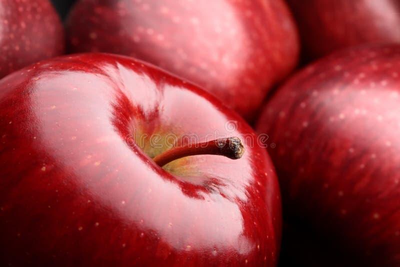μακροεντολή μήλων στοκ εικόνα