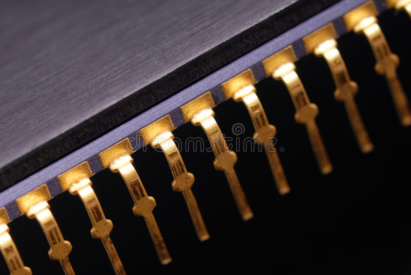 μακροεντολή τσιπ στοκ φωτογραφία με δικαίωμα ελεύθερης χρήσης