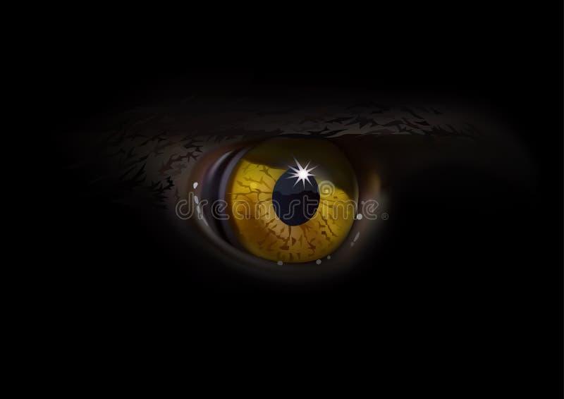 Μακροεντολή ματιών αετών απεικόνιση αποθεμάτων