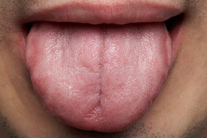 Μακροεντολή της ανθρώπινης γλώσσας στοκ φωτογραφίες