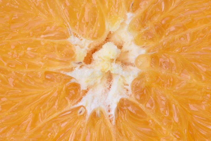 Μακροεντολή του φρέσκου πορτοκαλιού στοκ φωτογραφία με δικαίωμα ελεύθερης χρήσης