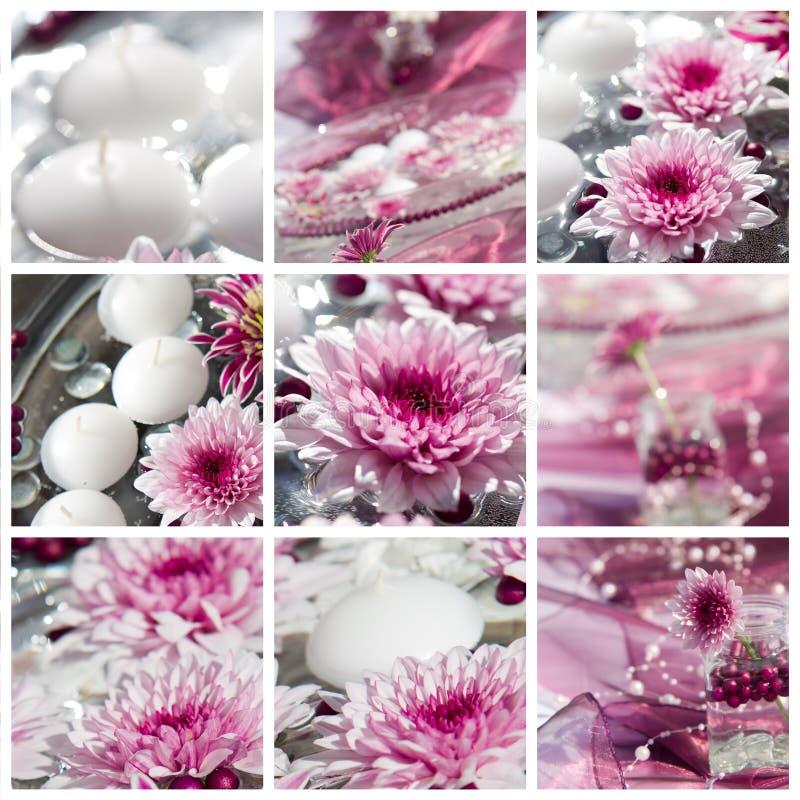 μακρο βλασταημένος πίνακας λουλουδιών διακοσμήσεων στοκ φωτογραφίες
