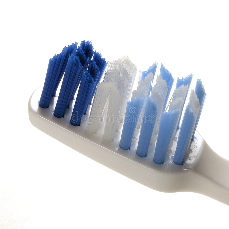 μακρο δόντι βουρτσών Στοκ Εικόνα