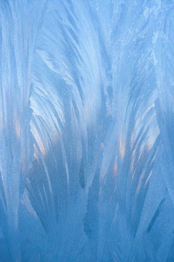 Μακρο κάθετο μπλε χειμερινό παγωμένο σχέδιο παρόμοιο ως φτερά ή φύλλα στοκ εικόνες