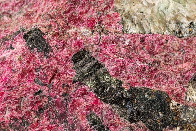 Μακρο μετάλλευμα Eudialyte πετρών στο άσπρο υπόβαθρο στοκ φωτογραφία