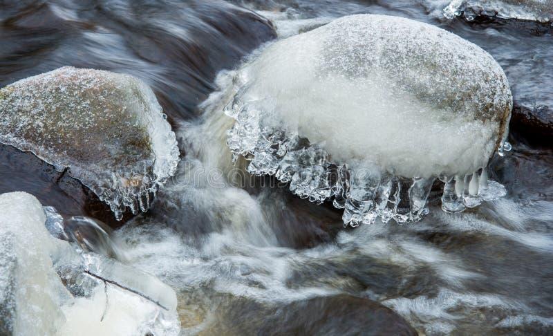 Μακρο χειμερινή λεπτομέρεια στοκ φωτογραφία με δικαίωμα ελεύθερης χρήσης