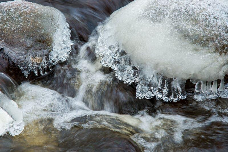 Μακρο χειμερινή λεπτομέρεια στοκ εικόνα με δικαίωμα ελεύθερης χρήσης