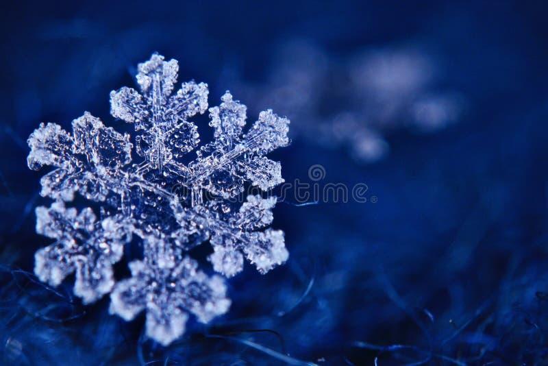 Μακρο snowflake κρύσταλλο στοκ φωτογραφίες