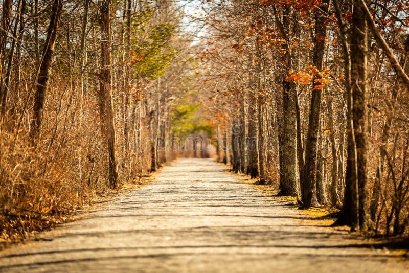 Μακρύς δρόμος πουθενά στοκ εικόνα