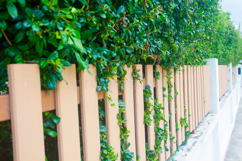 Μακρύς ξύλινος φράκτης ύφους κομητειών στοκ φωτογραφία