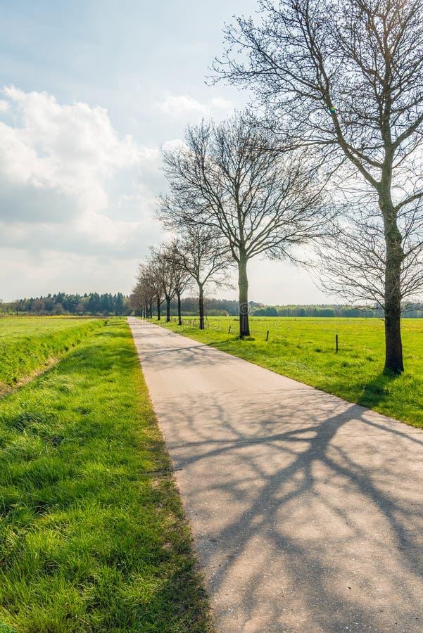 Μακρύς φαινομενικά ατελείωτος ευθύς δρόμος σε ένα επίπεδο τοπίο στοκ εικόνες με δικαίωμα ελεύθερης χρήσης