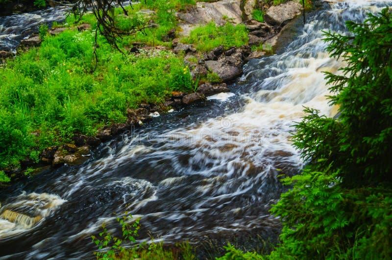 Μαλακό νερό του ρεύματος στο φυσικό πάρκο, όμορφος καταρράκτης στοκ εικόνες
